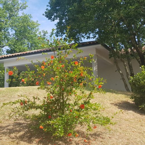 villasoccitanes Les Cayrous jardin