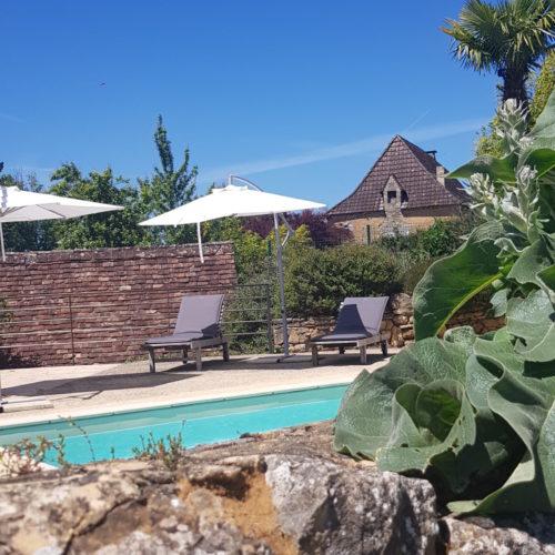 villasoccitanes piscine les palmiers
